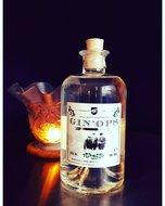 GINOPS-by-Pegasus--België